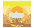 Himalaya Foods